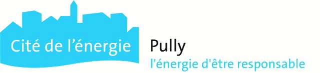 Pully